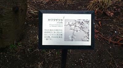 02235.jpg